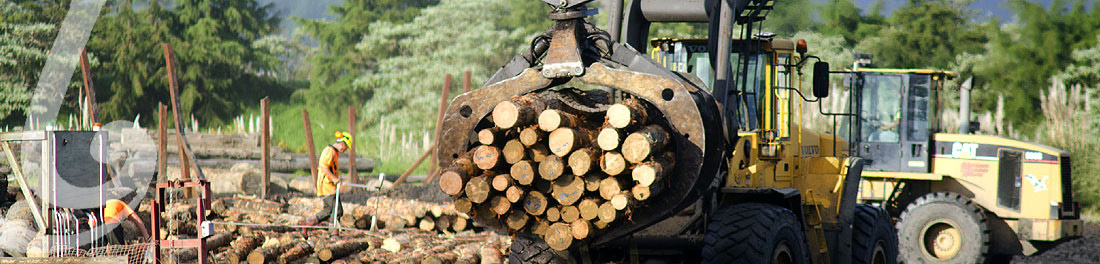 H&S Forestry Industry