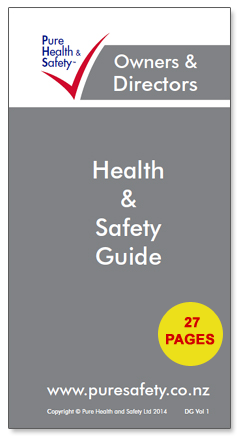 "Owners & Directors ""How to"" Health & Safety Guide"