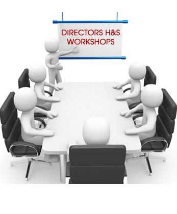 Directors H&S Workshops